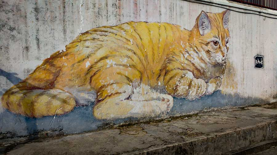 street art georgetown penang malasia arte callejero murales pintadas