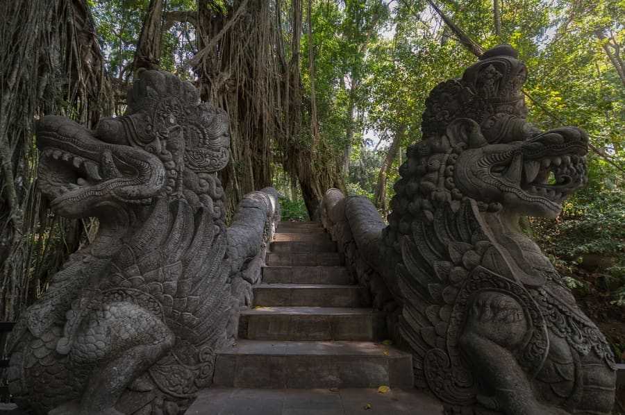 Things to do in Bali in a week - Sacred monkey forest of ubud