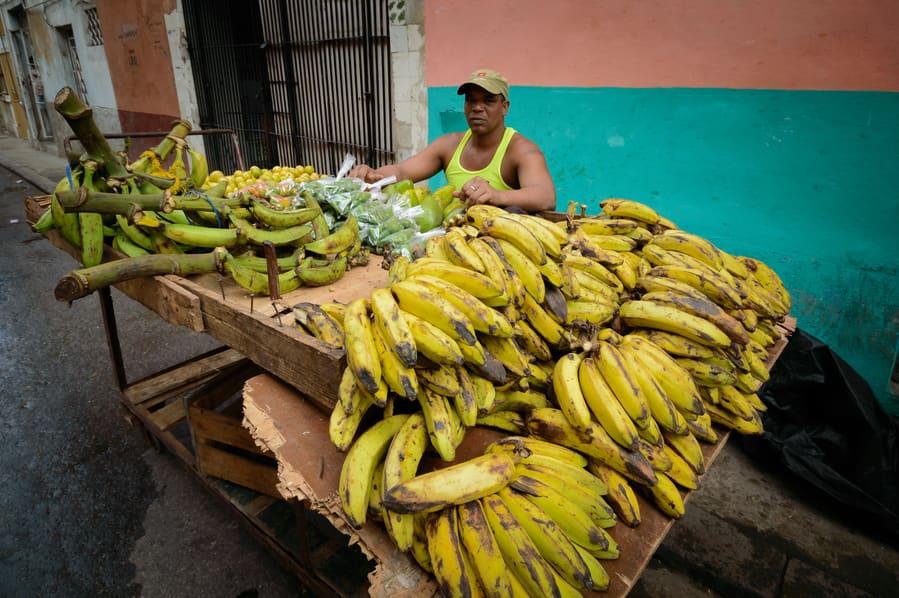 people havana cuba bananas stall