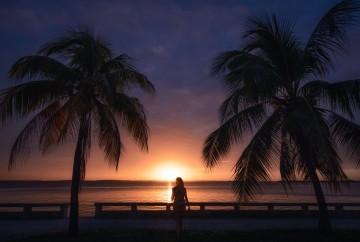 [:es]Palmeras Malecón de Cienfuegos Cuba[:en]Palm trees at the Cienfuegos Malecón Cuba[:]