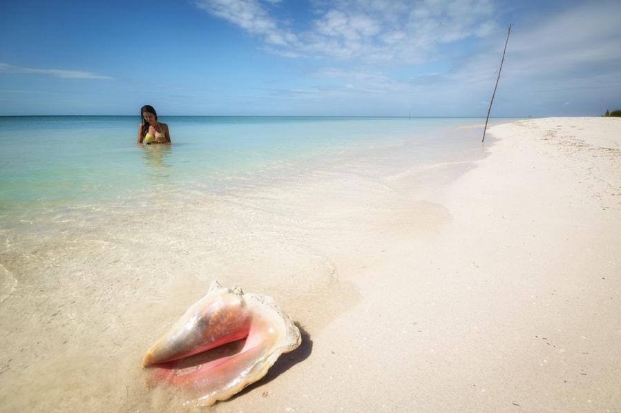 Concha gigante Cuba Cayo Jutías. la playa más bonita de cuba