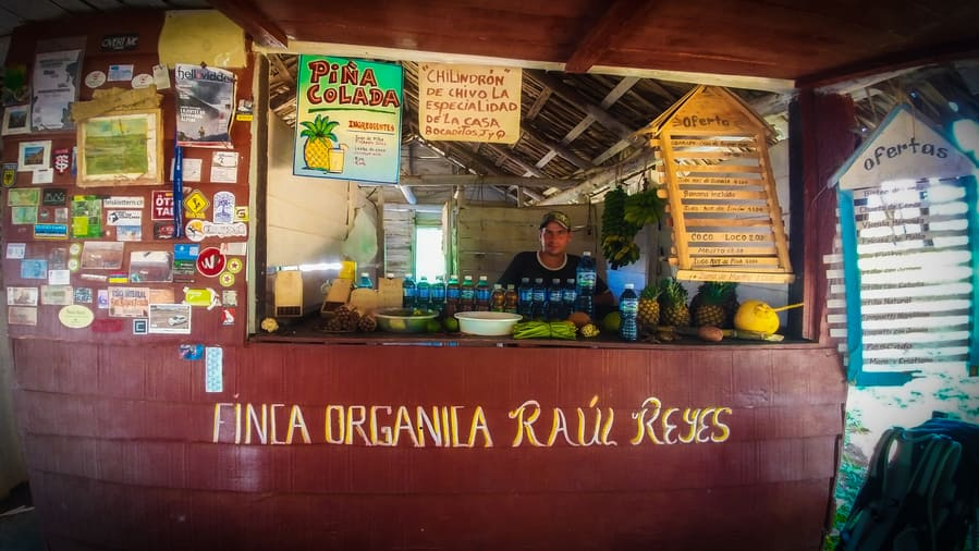 finca de raul reyes things to do in viñales cuba
