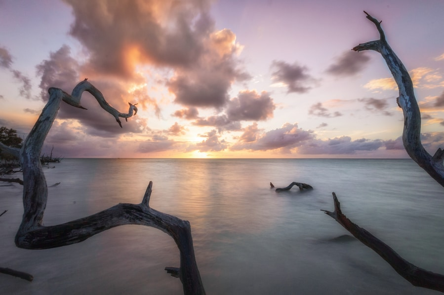 mangrove cayo jutias sunset