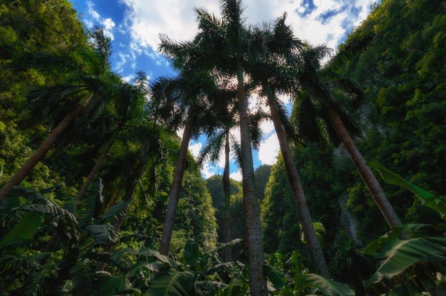 Palenque de los Cimarrones Cuba Viñales