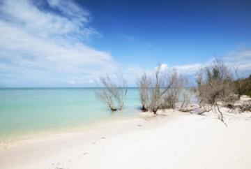 [:es]playa en cayo jutías cuba[:en]beach in cayo jutías cuba[:]