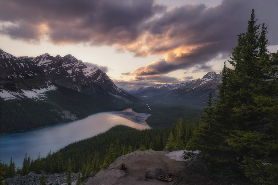 peyto lake canadian rockies photo tour