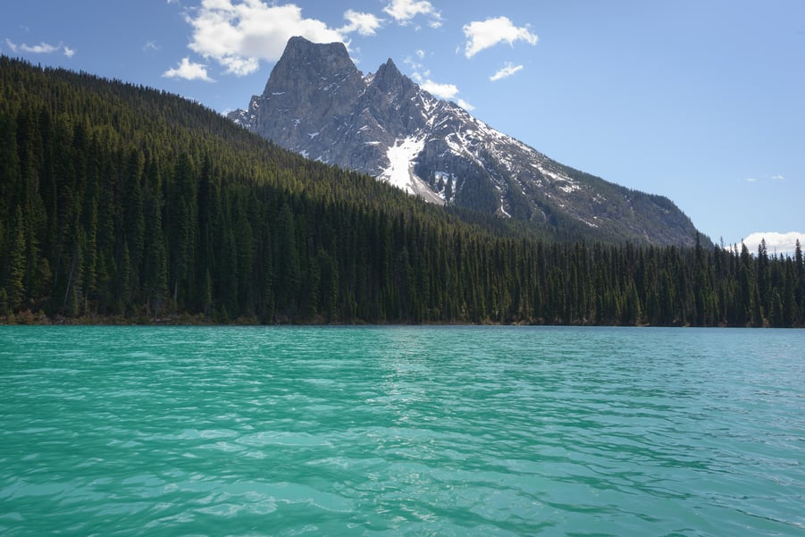 emerald lake the best lake in yoho national park