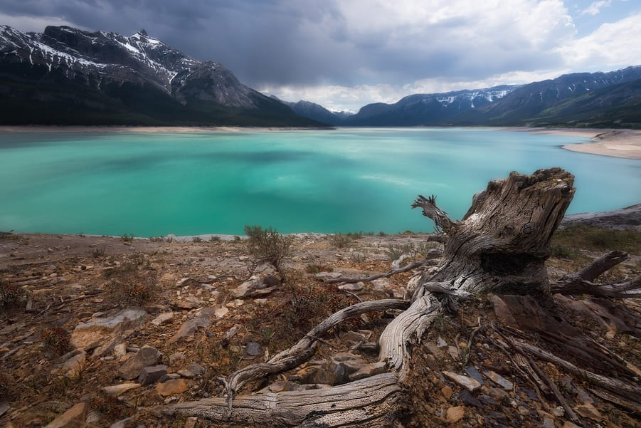 visit Abraham lake from the icefields parkway canada