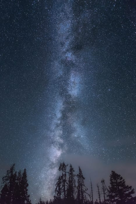 Milky-way-vertical-trees-Editar.jpg