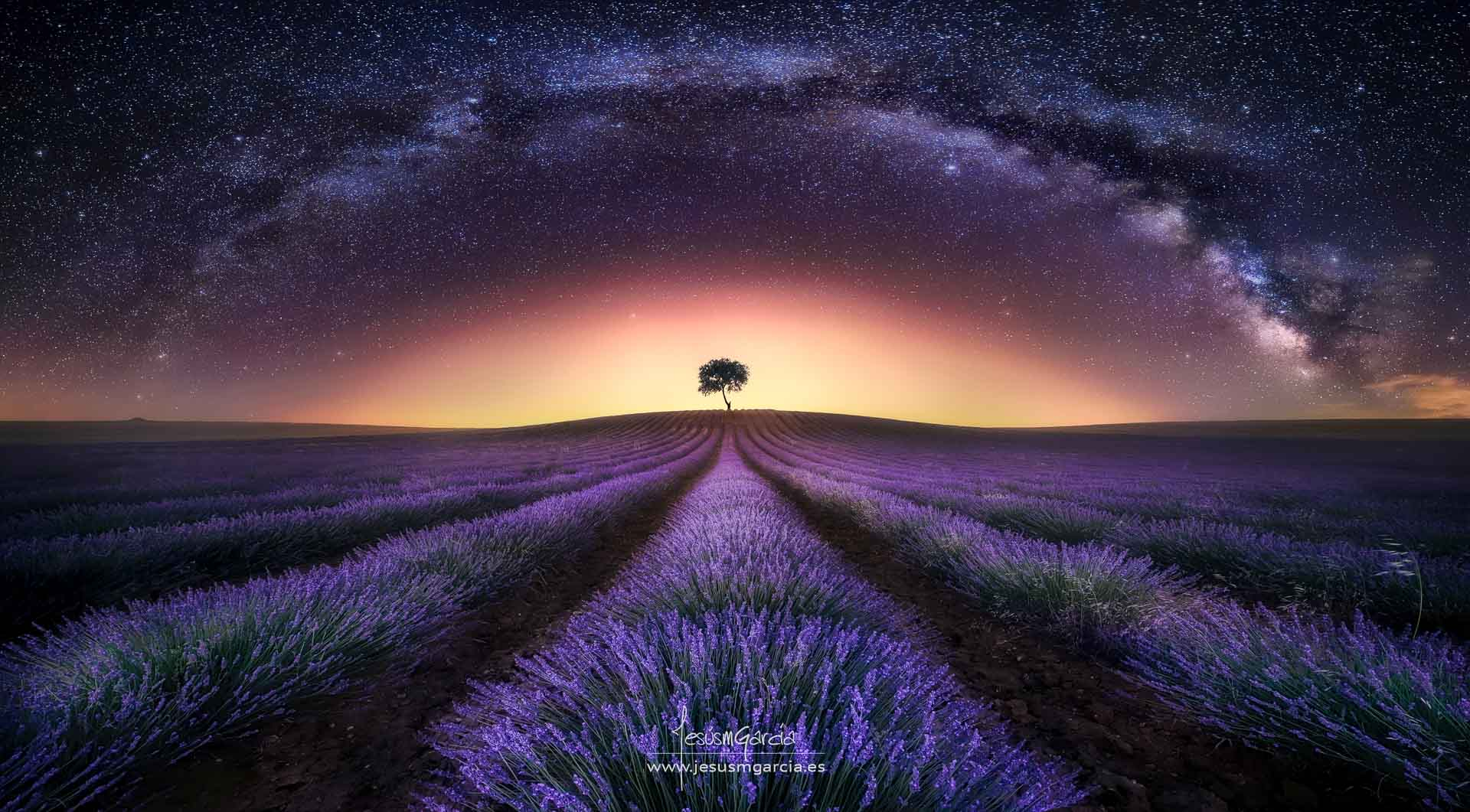 Milky Way  brihuega Spain night stars lavender