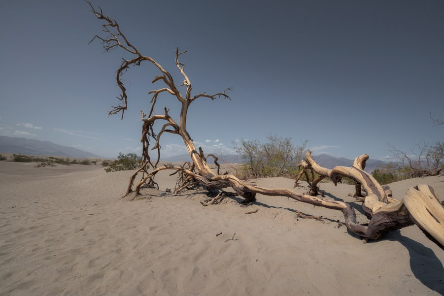 mesquite flat dunes must see places in death valley