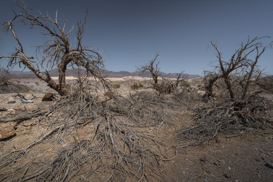 mesquite flat dunes death valley travel tip