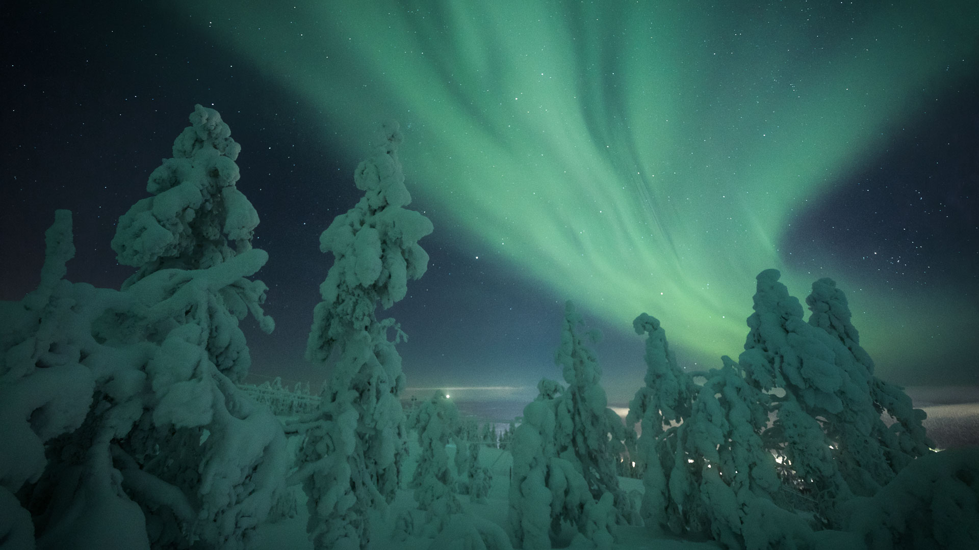 Northern Lights Finland Levi Boreal forest tundra