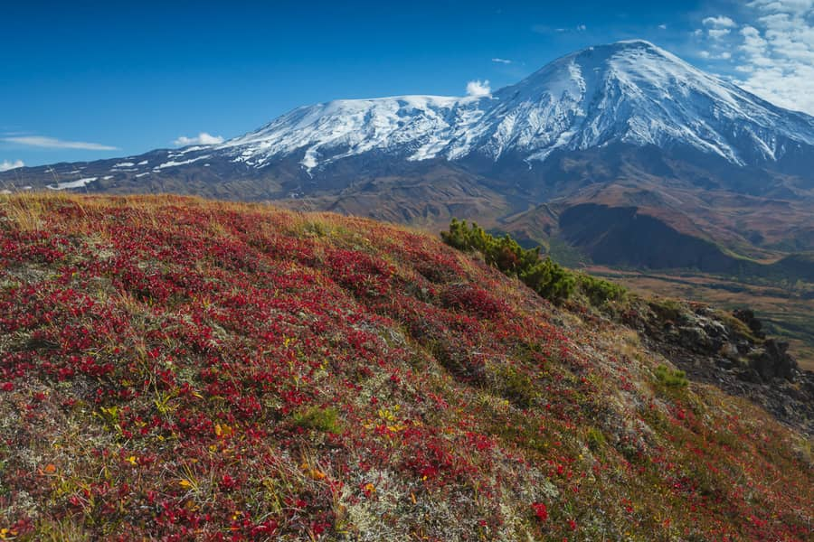 tolbachik best things to do in kamchatka trip with photographers price