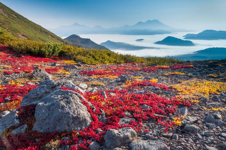 best time to visit kamchatka how to get there russia