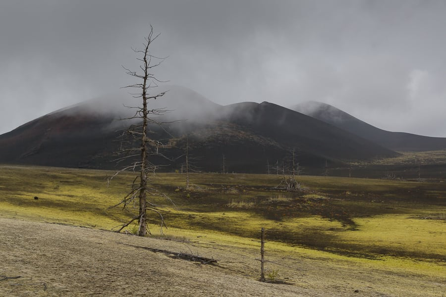 death forest kamchatka russia landscape trip in 15 days