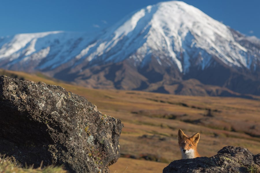 kamchatka tourism vacation best places to visit