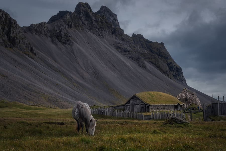 viking village stokksnes vestrahorn mountain horse in iceland