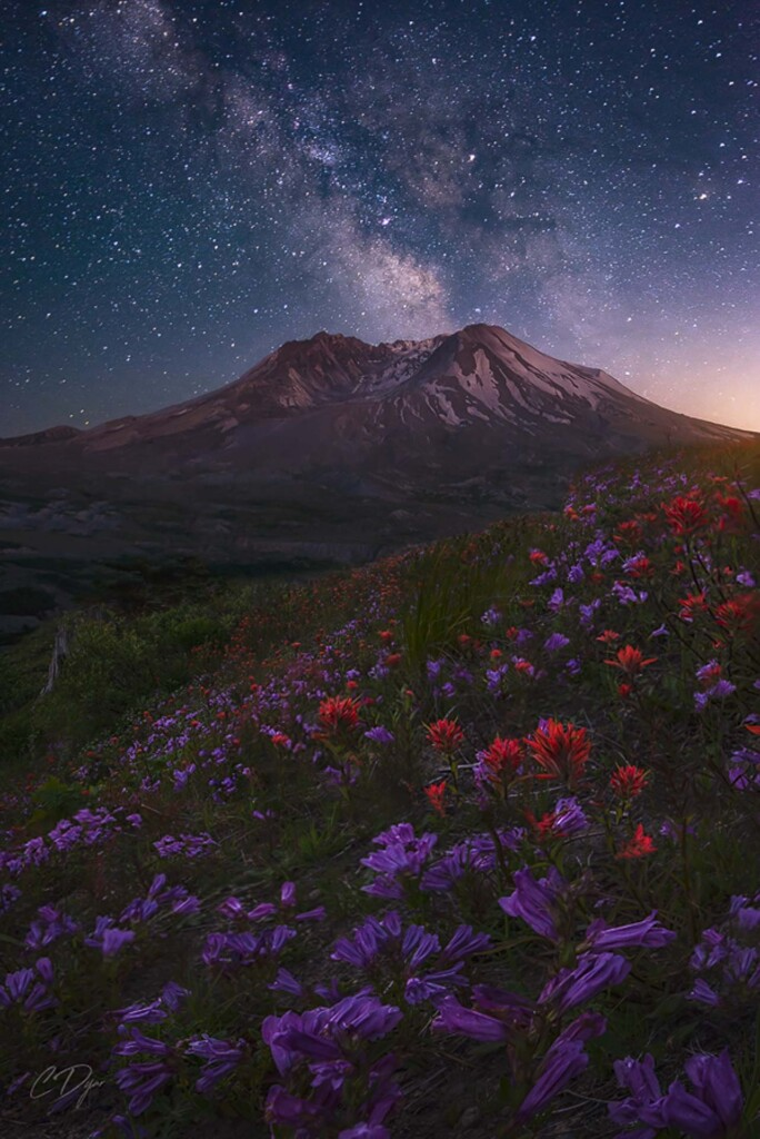 """Si Yett Under the Stars""– Candace Dyar"