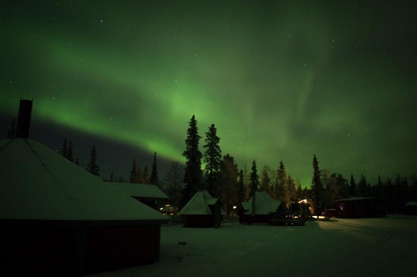 camp to see the northern lights in senja