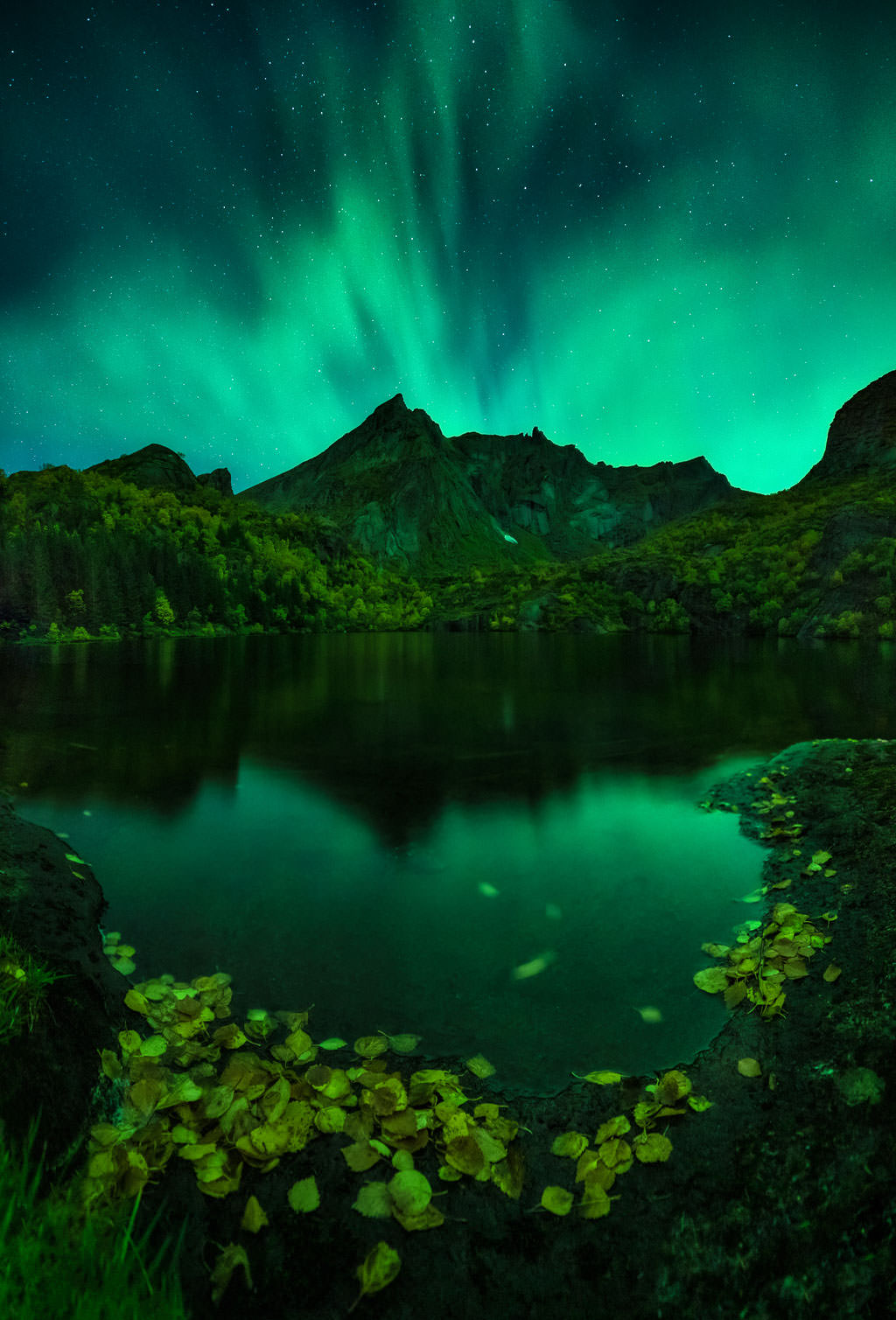Best Aurora Borealis photographs