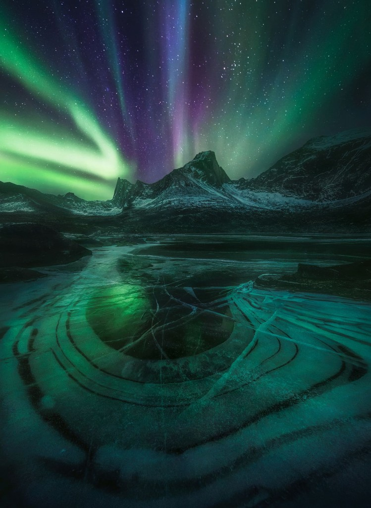 """THE NIGHT WE JOINED OUR DREAMS"" – MARC ADAMUS"