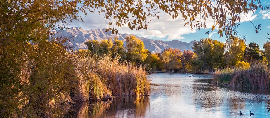 Tule Springs Fossil Beds National Monument, things to do around las vegas