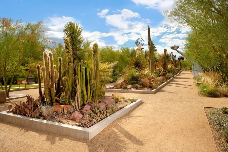 Las Vegas Springs Preserve, a natural place to go in Las Vegas