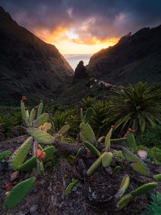 barranco de Masca, ruta que hacer en Tenerife