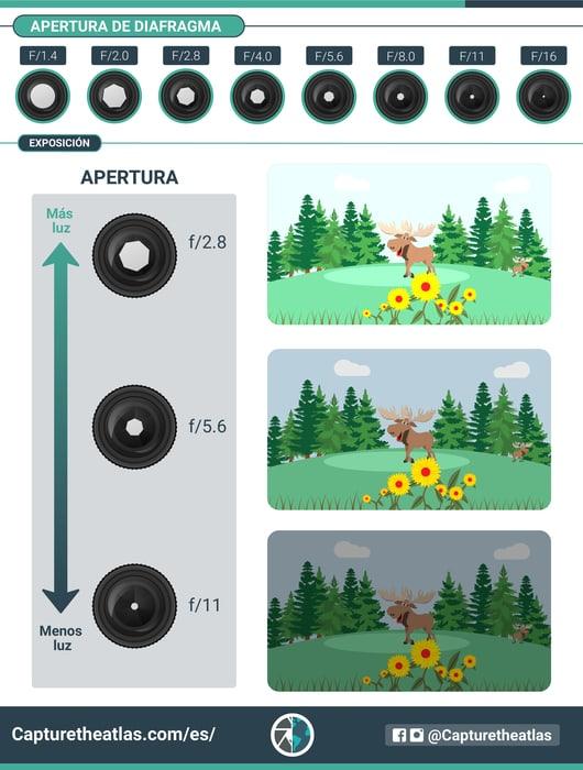 como se relacionan la apertura y la exposición en fotografia infografia