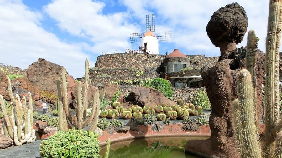 Cactus Garden, one of the most beautiful gardens in Lanzarote