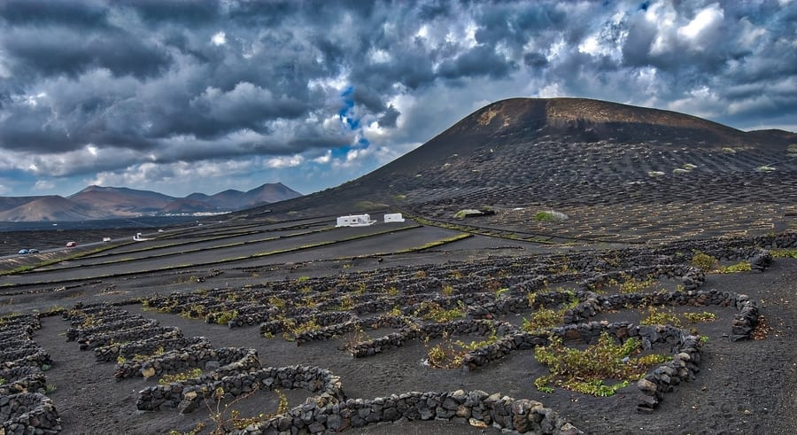 Wine tour, something to do in Lanzarote, Canary Islands, Spain