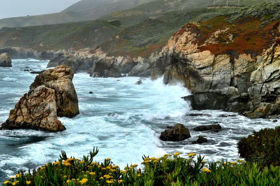 Excursion to Carmel and Monterey, something to do near San Francisco