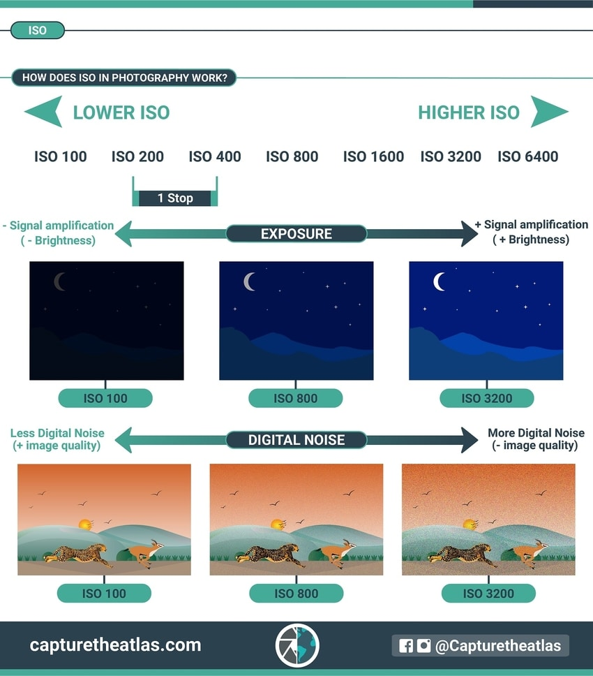 photography basics ISO