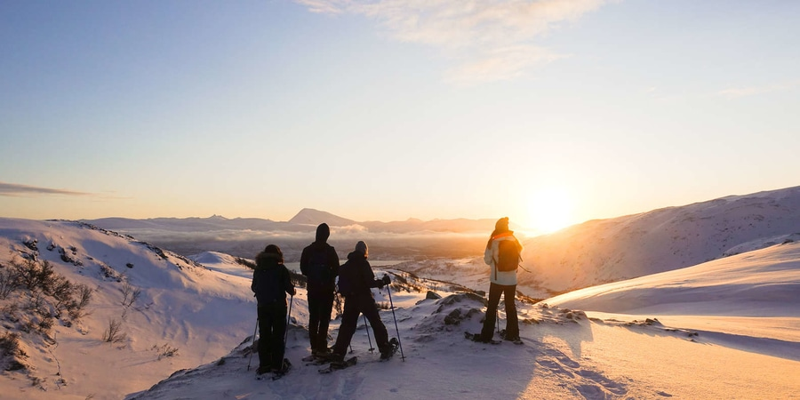Snowshoe Hiking Tour, something to do in Tromso