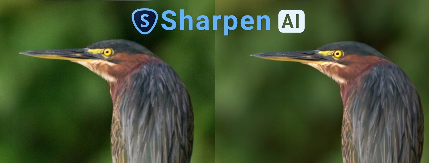Topaz Sharpen Ai Review