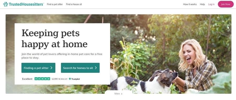 Encuentra alojamiento gratis a cambio de cuidar mascotas