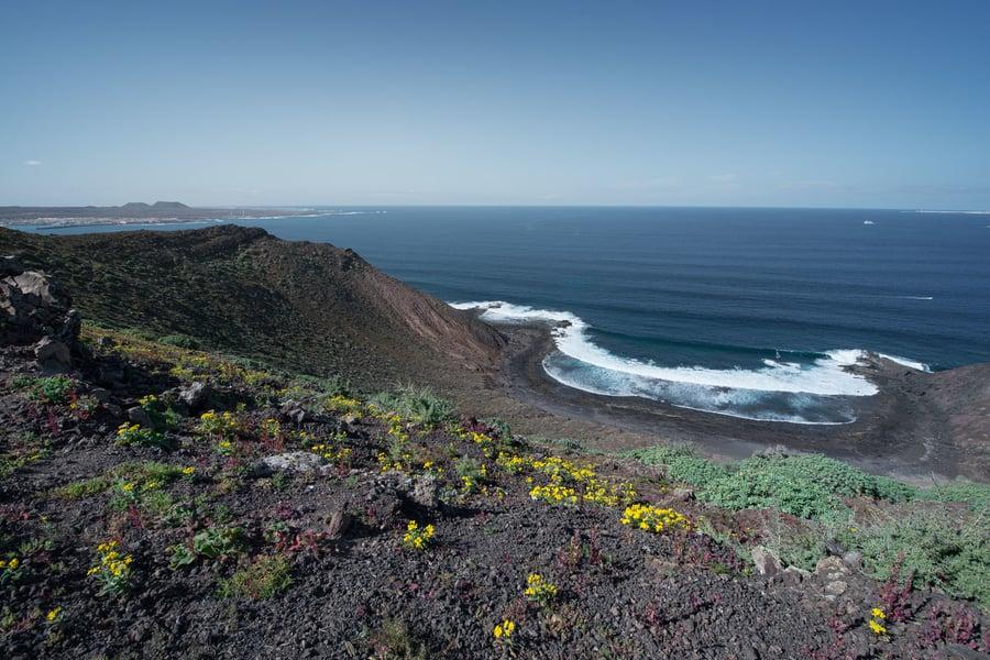 How to get permit to Isla de Lobos