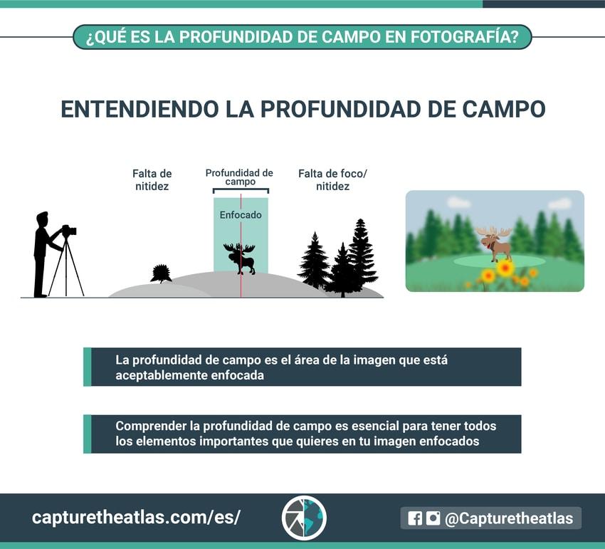 Conceptos básicos de la fotografía profundidad de campo