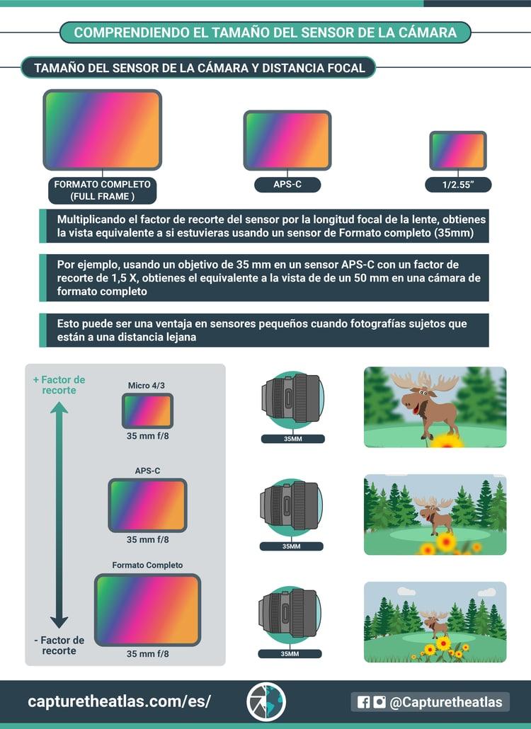 tamaño del sensor de la camara y distancia focal en fotografia