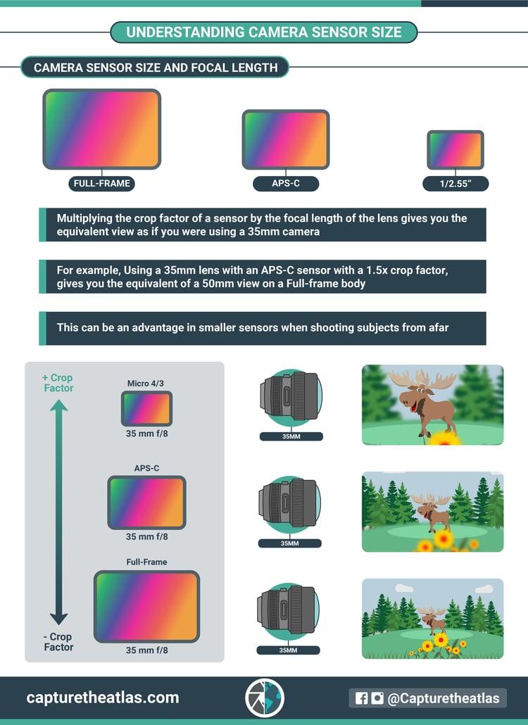 camera sensor size and focal length explained