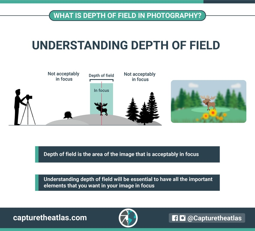 what is depth of field and how to master it