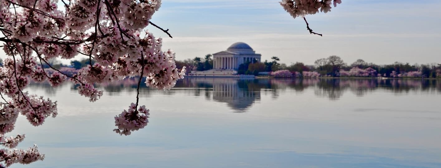 Things to do in Washington DC, USA