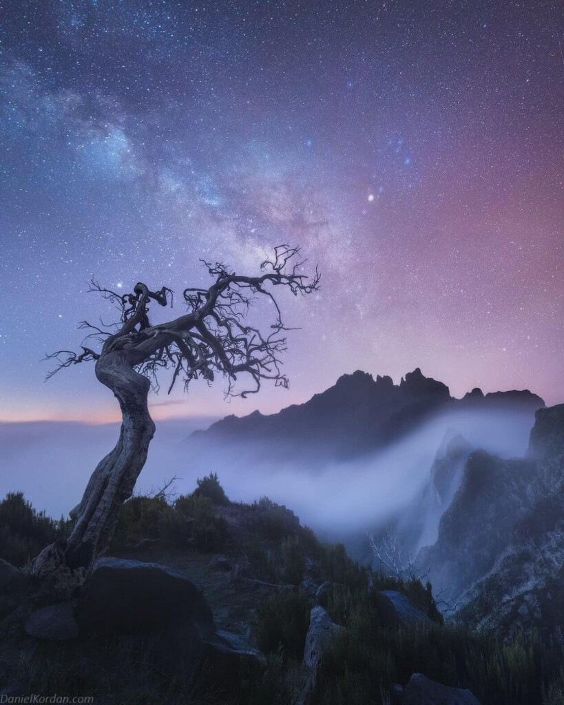 «Estrellas de Madeira» – Daniel Kordan