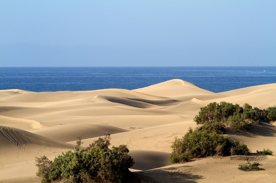 Which is the prettiest canary island, Gran Canaria