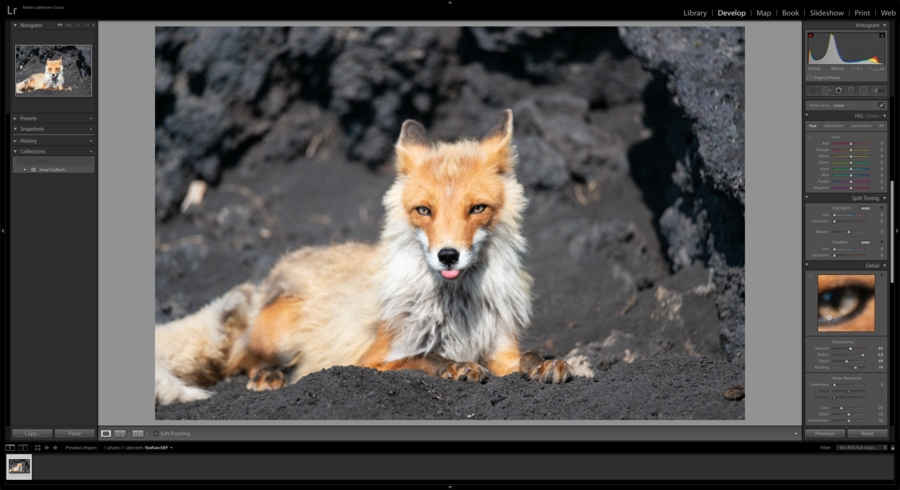 Lightroom to sharpen soft images