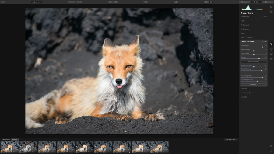 Luminar 4 to fix blurry photos