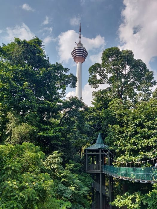 KL Forest Eco Park, unique things to do in Kuala Lumpur