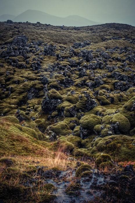 Berserkjahraun, Snæfellsnes Iceland
