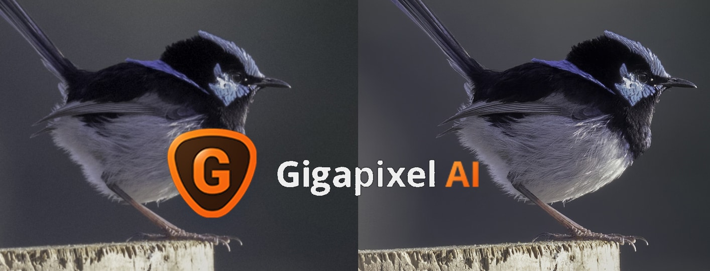 Gigapixel AI review